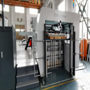 automatic stamping die-cutting machine inspection